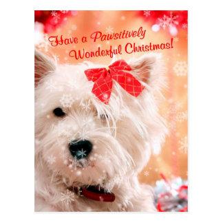 Souhaits de Noël de Terrier blanc de montagne Cartes Postales