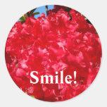 Sourire ! les autocollants Rhodies rouge fleurit