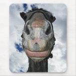 Sourires drôles de cheval tapis de souris