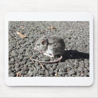 Souris de bébé tapis de souris