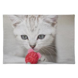 Souris sentante de jouet de chaton britannique de  set de table