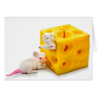 Souris sur la carte drôle de jouets de fromage
