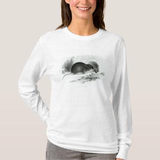Souris, Terre de Feu, Amérique du Sud c.1832-36 T-shirt