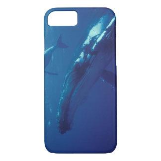 South Pacific, Tonga. baleine et veau de bosse Coque iPhone 7