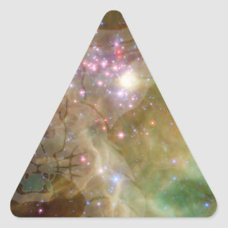SpacePanther Sticker Triangulaire
