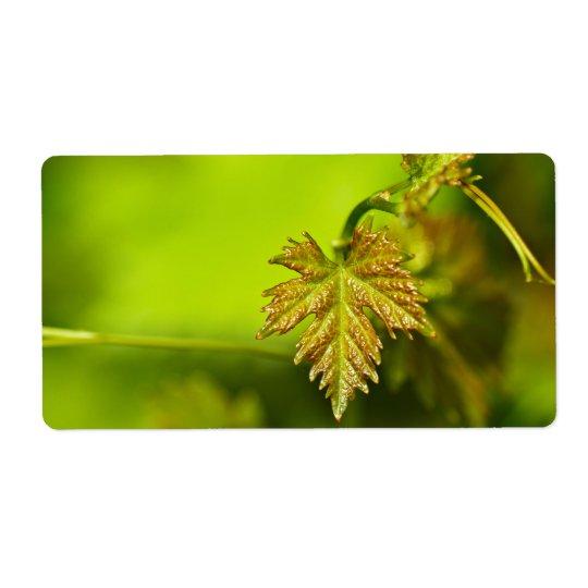 Spring Vine Leave Étiquette D'expédition