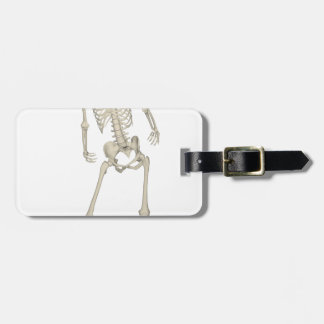 Squelette #7 étiquettes bagages