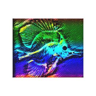 Squelette coloré de scalaire toile