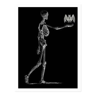 Squelette et carte postale de batte