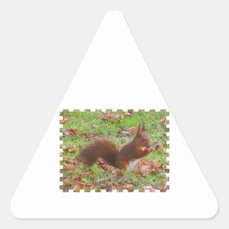 Squirrel - Ecureuil Sticker Triangulaire