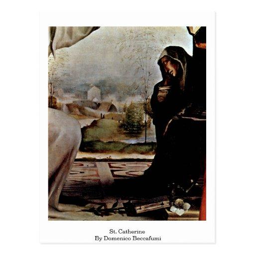 St Catherine par Domenico Beccafumi Cartes Postales