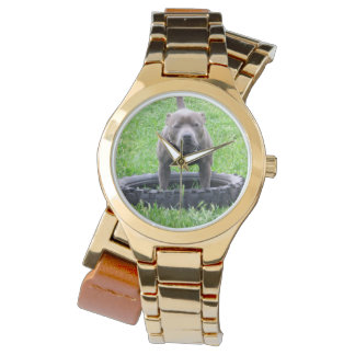Staffordshire_Bull_Terrier_Ladies_Gold_Watch Montres Bracelet