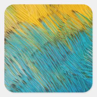 Sticker Carré Abrégé sur plume de perroquet d'Amazone
