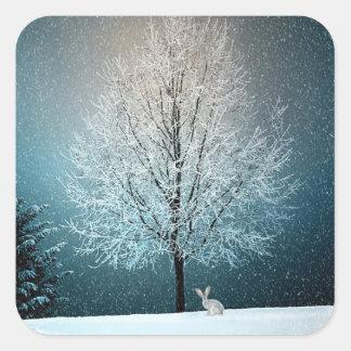 Sticker Carré Arbres de Noël la nuit
