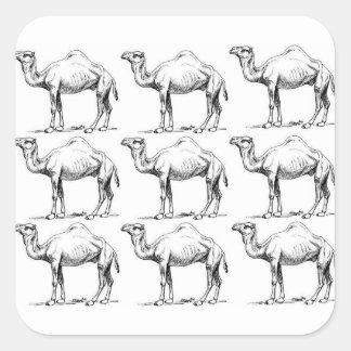 Sticker Carré Art de troupeau de chameau