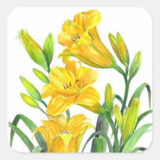Sticker Carré Art floral jaune d'hémérocalles d'aquarelle