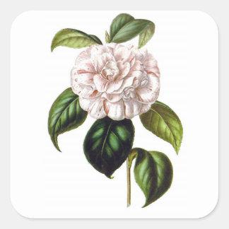 Sticker Carré Article de fleur de Camille