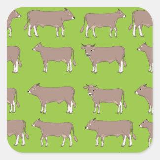 Sticker Carré bétail bruns