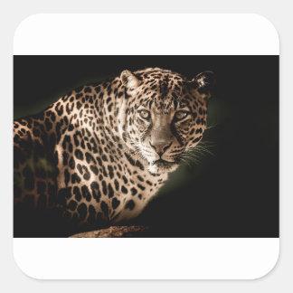 Sticker Carré Cadeaux de tigre