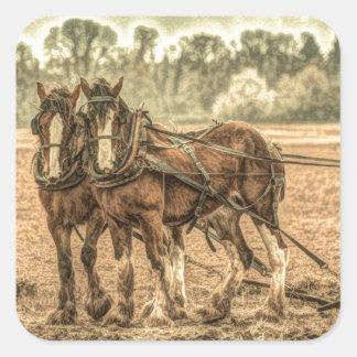 Sticker Carré Chevaux primitifs de ferme de pays occidental