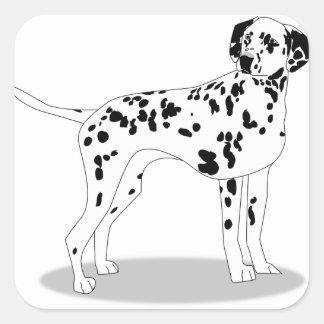 Sticker Carré Chien de Dalmation