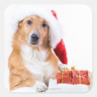 Sticker Carré Chien de Noël avec l'andouiller et les cadeaux