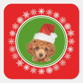 Sticker Carré Chien mignon de casquette de Père Noël de Noël de