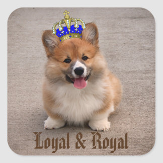 Sticker Carré Chiot loyal et royal de corgi