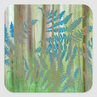 Sticker Carré Collage des fougères et de la forêt   Seabeck, WA