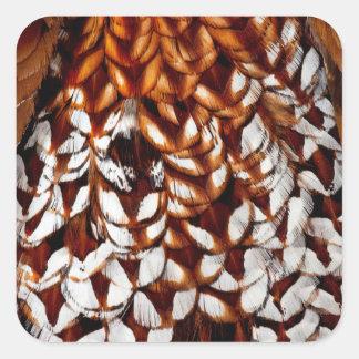 Sticker Carré Conception de cuivre de plume de faisan