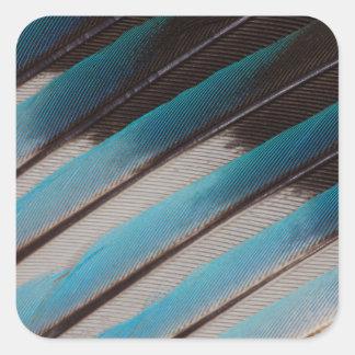 Sticker Carré Conception de plume de rouleau Bleu-Gonflée par