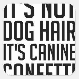 Sticker Carré Confettis canins