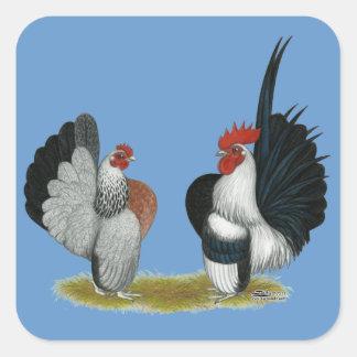 Sticker Carré Coqs nains de Serama