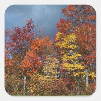 Sticker Carré Couleurs de chute dans Blue Ridge Mountains