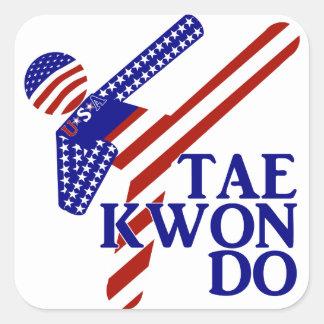 Sticker Carré Coup-de-pied des Etats-Unis le Taekwondo (2)