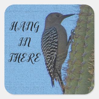 Sticker Carré Coup en là cactus accrochant de Saguaro de pivert