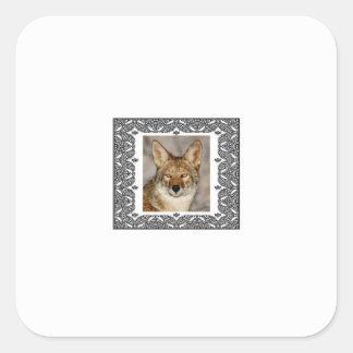 Sticker Carré coyote dans un cadre