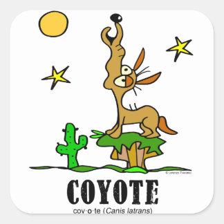 Sticker Carré Coyote par le © de Lorenzo Lorenzo 2018 Traverso