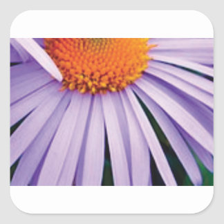 Sticker Carré demi d'art de fleur