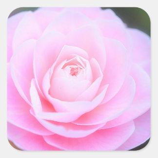 Sticker Carré Douceur rose