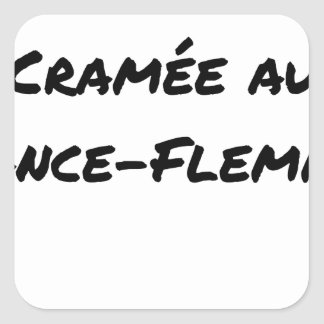 Sticker Carré ÉNERGIE CRAMÉE AU LANCE-FLEMME - Jeux de mots