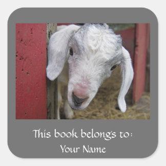 Sticker Carré Ex-libris de chèvre de bébé
