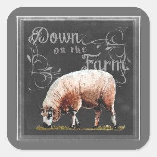 Sticker Carré Ferme | de tableau vers le bas sur les moutons de