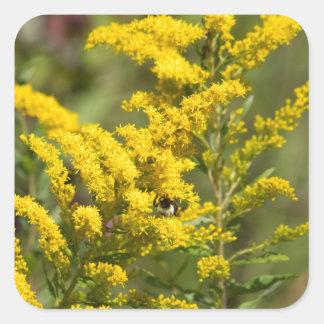 Sticker Carré Fleurs sauvages dorés