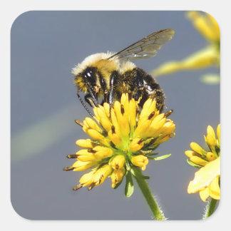 Sticker Carré Gaffez l'autocollant d'abeille
