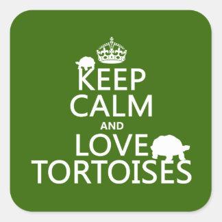 Sticker Carré Gardez le calme et aimez les tortues (toute