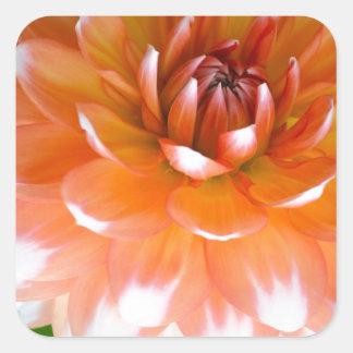Sticker Carré Gloire orange et blanche