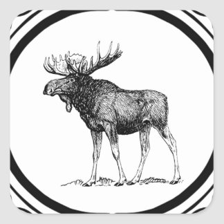 Sticker Carré grand art d'orignaux de taureau