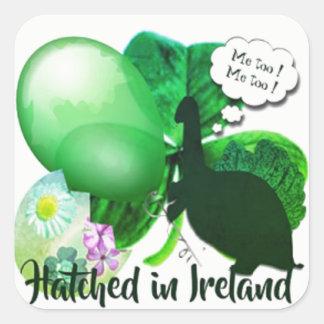 Sticker Carré Haché en Irlande