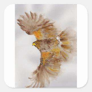 Sticker Carré Harris colportent, oiseau de proie